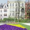 Frühlingsboten auf dem Schillerplatz