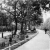 Cottbus: Promenade am Ostrower Damm
