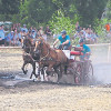 Dorffest und Kutschentreffen in Dörrwalde am 2. und 3. August