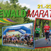 Mehr als 20 000 Füße im Spreewald auf Achse | Spreewaldmarathon vom 21.-23. April 2017
