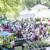 Cottbus: Gartenfestival Park & Schloss Branitz lockt vom 26.-28.Mai