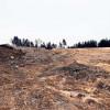 Forst: Lehre aus Deponiebrand