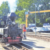 Cottbus: Am Wochenende mit der Dampflok fahren
