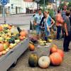 Spremberg: Die Dresdener Straße spielt wieder in Liga 1