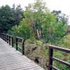 Spremberg: Die Stadt räumt noch immer auf