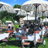 Cottbus: Wieder lockt ein Gartenfestival