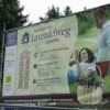 Spremberg: Eine neue Strasse für Spremberg