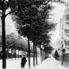 Cottbus: Als die Straße noch Vorgärten hatte