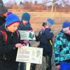 Kräuter locken an die Slawenburg