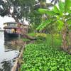 Reisebeitrag: Faszinierendes INDIEN