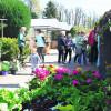 Spremberg: Gartenfreunde starten durch
