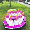 50 Jahre Karneval in Hohenbocka wird am 25. 08.18 gefeiert