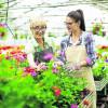 Arbeiten trotz Rente
