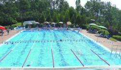 Großräschen: Schwimmer gesucht
