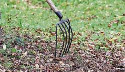 Region: Gartenarbeiten im Herbst
