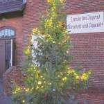 Spreewald-Tapas und Adventslichter