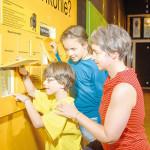 Ausstellung in Senftenberg verlängert