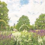 Führung durch den Forster Rosengarten