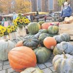 Cottbus: Wochenmarkt findet wieder statt