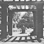 Bilder aus dem alten Cottbus: Schöne Erinnerungen für viele Leser