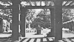 Bilder aus dem alten Forst: Frosch 'hüpfte' aus Guben nach Forst