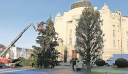 Strahlender Theaterbaum in Cottbus