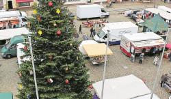 Senftenberger Weihnachtsbaum geschmückt