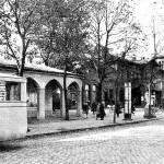 Open Air im Forster Rosengarten