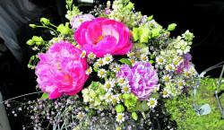 Sag's mit Blumen: Sonntag, 14.02.21, ist Valentinstag