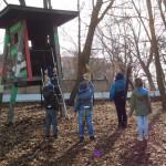 Lauchhammer: Luthereiche wächst im Schlosspark