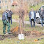 Senftenberg: Neuer Stadtsprecher