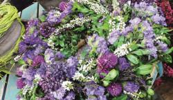 Schöne Herbstpflanzen für Balkonien