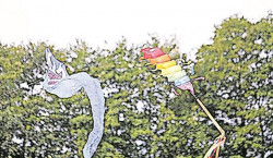 Buntes Drachenfest in Cottbus