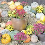 Feiern in mittealterlicher Atmosphäre auf dem 18. Herbstfest