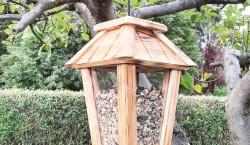 Futterhäuschen und Meisenknödel: Tipps rund um die Vogelfütterung