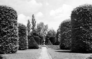 Forst. Teschendorff-Garten im Rosengarten