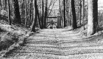 Spremberg: Georgenberg Friedhof