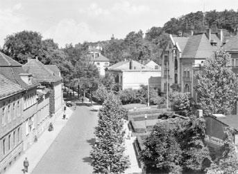 Altes Guben: Grüne Wiese in der Crossener Vorstadt