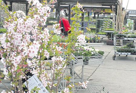 Groß Gaglow: Frühlingsbunte Pflanzzeit