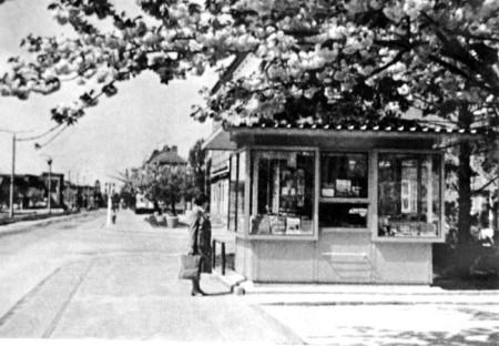 Guben: Der Kiosk unterm Zierkirschenbaum