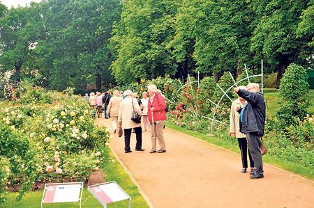 Gartenliebhaber können sich am 13.06. in der Region umschauen