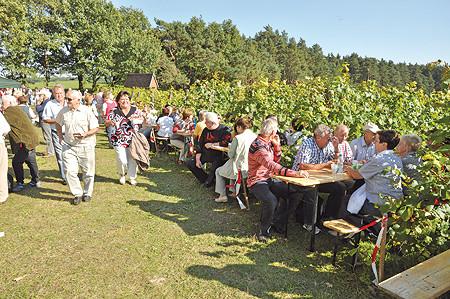 Zeit für Federweißer und Zwiebelkuchen in Guben am 26.09.