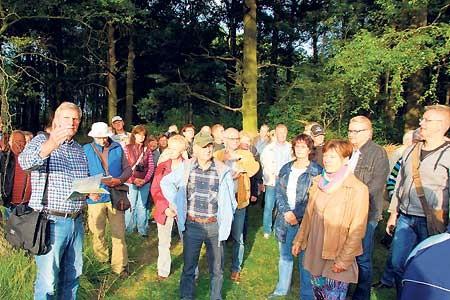 Wo Lausitzer Urwälder wachsen
