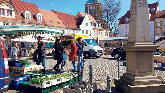 Pflänzchen aus dem Seenland auf dem Senftenberger Markt