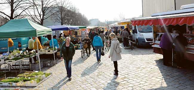 Rahmen für den Forster Markt in Sicht