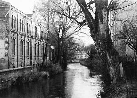 Forst: Gesundheitsamt am Mühlgraben