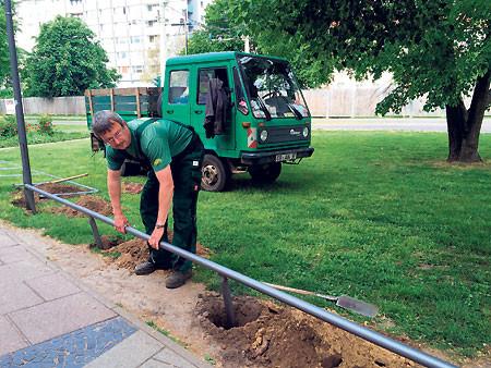 Das Grün in der Cottbuser Stadtpromenade wird geschützt