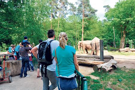 Mit der Parkbahn zum Kinderfest am 1.6. in den Tierpark