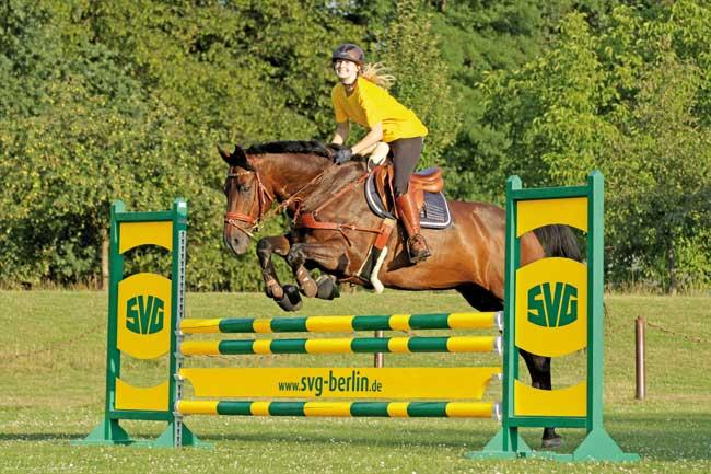 155 Reiter starten auf 200 Pferden an diesem Wochenende, 30./31. Juli 2016, an der Kutzeburger Mühle