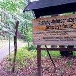 Vor Muskau im Märchenwald